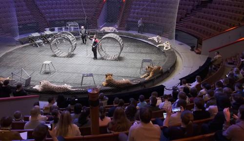 Цирк на проспекте Вернадского принял участие в акции «Мы вместе: цирк и дети»