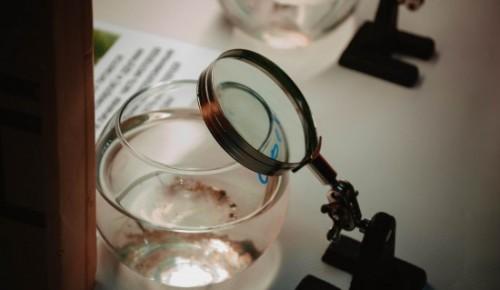 День воды в Дарвиновском музее
