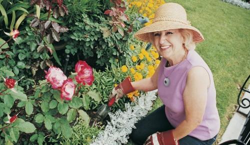 Долголетов Гагаринского района приглашают на онлайн-занятия по садоводству