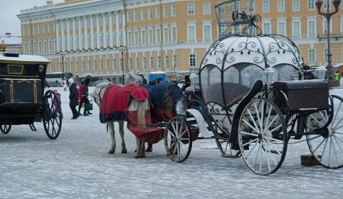 Москва и Петербург запустят совместные программы в сфере детского туризма в 2022 году