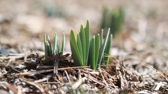 Синоптики дали прогноз погоды в апреле