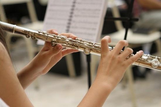 Концерт вокальной и инструментальной музыки  пройдет в Академическом районе 4 апреля