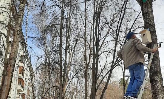 Во дворе  пятого корпуса  школы №626 в Котловке  повесили скворечники