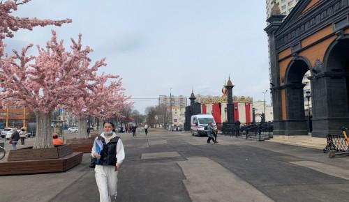 Территорию возле станции метро «Новые Черемушки» очистили от грязного снега