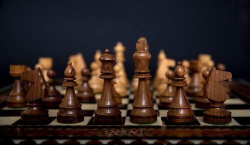 В Ломоносовском районе пройдет очередной мастер-класс по шахматам