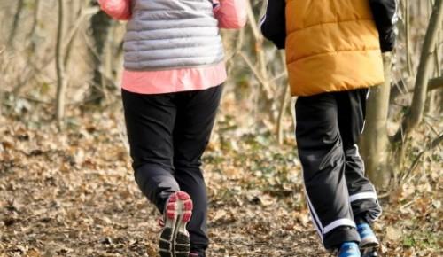В забеге «Лисья гора» в Битцевском лесу могут принять участие как начинающие, так опытные спортсмены