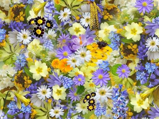 Жителей Южного Бутова приглашают собрать «Лепестки весны»
