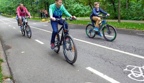 В Воронцовском парке возобновил работу пункт проката спортивного инвентаря