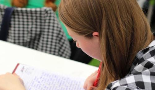 Школьница из Зюзина заняла призовое место на Олимпиаде по русскому языку