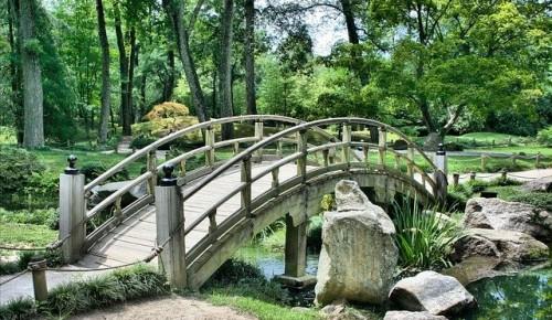 В парке «Долина реки Котловка» обустроят зону отдыха