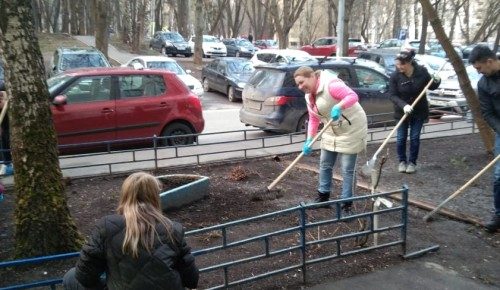 Жители Конькова покрасили вазоны и заборы в своем дворе