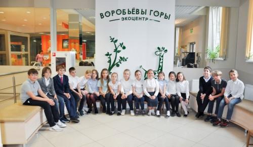 Школьники Ломоносовского района приглашаются на экозанятия