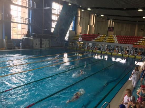 На фестивале паралимпийского спорта пловцы «Самбо-70» завоевали 23 медали