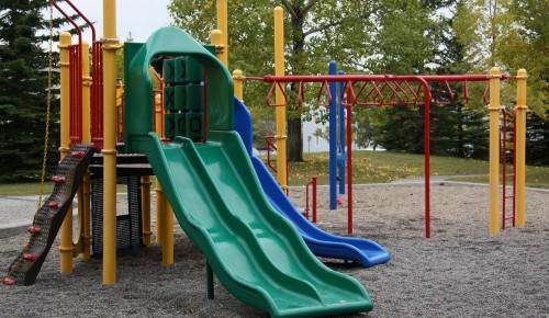 В институте Семейных проектов рассказали, как можно улучшить школьный двор