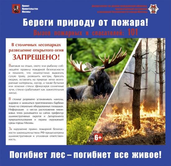 Москвичам напомнили о правилах безопасности на природе