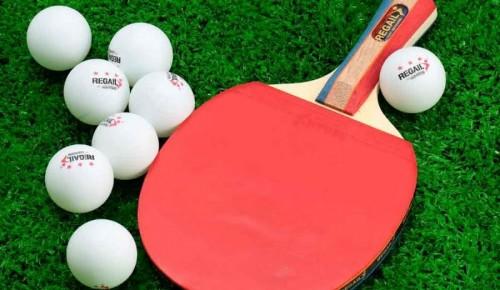 В Ломоносовском районе продолжается набор в спортивный клуб по настольному теннису