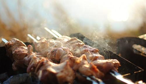 В Битцевском лесу «Мосприрода» организовала 34 «пикниковые» точки с мангалами