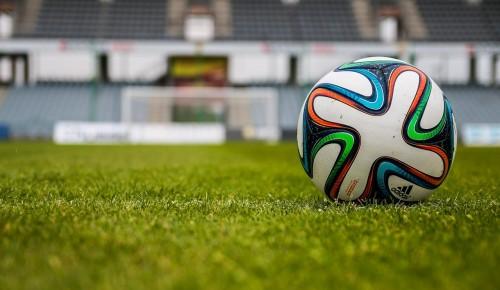 В Ясеневе построят два футбольных поля