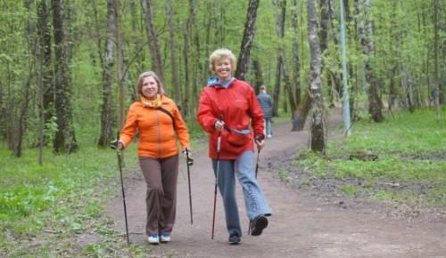 Ходите себе на здоровье. Жителям ЮЗАО рассказали о пользе скандинавской ходьбы