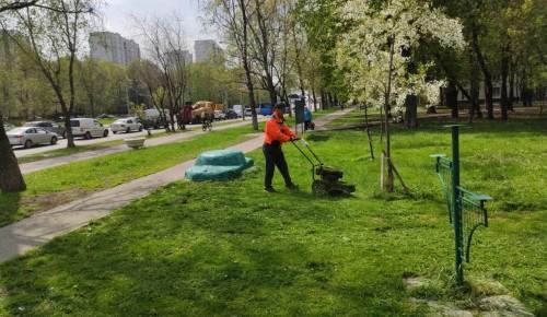 Покос газона проводят коммунальщики в Черемушках