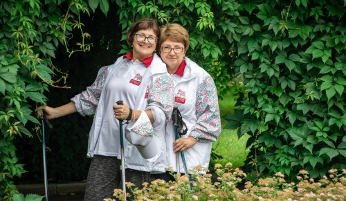 Жителям старшего поколения из Черемушек дадут полезные советы о скандинавской ходьбе
