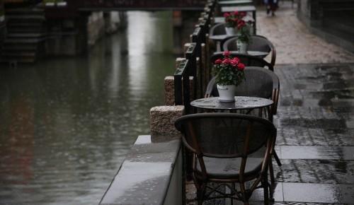 Жителей Академического района предупредили о дожде и усилении ветра