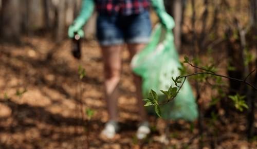 Очередное забег «Культурный плоггинг» пройдет в Битцевском лесу 12 июня