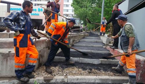 Работы по благоустройству в Ломоносовском районе