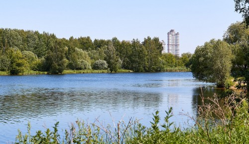 Член Совфеда Инна Святенко: Сохранение природных зон имеет высокую социальную значимость для жителей Москвы