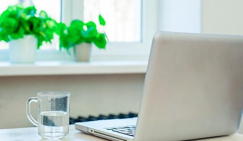В столице до конца лета можно будет оплачивать кружки и секции онлайн