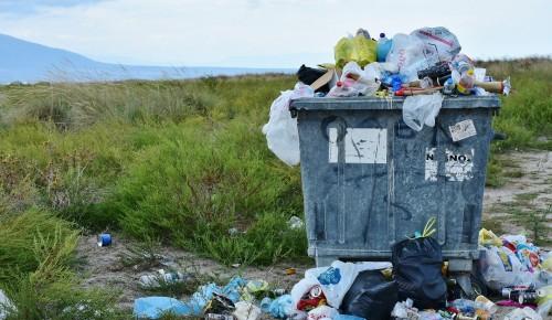 """В экоцентре """"Воробьёвы горы"""" рассказали об опасности мусора, оставленного на природных территориях"""