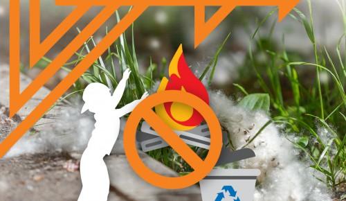 Пожароопасный «летний снег»
