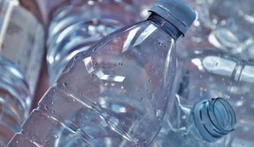 IТ-проект для отказа от пластиковых стаканов создали в школе  №1368