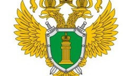 Вынесен приговор в отношении шести иностранных граждан за совершение преступлений в парке Южное Бутово