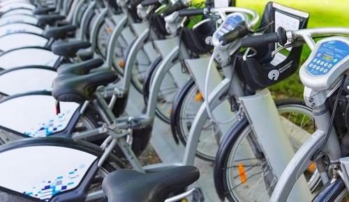 В Обручевском районе для любителей активного образа жизни проложен велопаршрут в Юго-Западном лесопарке