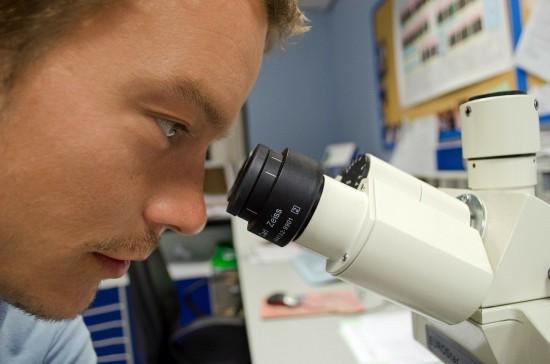 Учёные Губкинского университета определили векторы мировых исследований