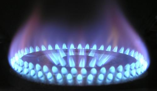 Котловчане могут узнать график проверок  газового оборудования на сайте Мосгаза