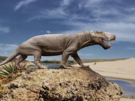 Дарвиновский музей  показал скелет зверообразного ящера из Архангельска