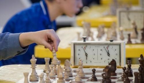Логика и память: какие способности развивают у ребёнка шахматы