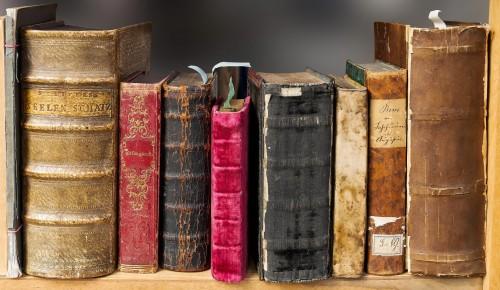 В детской библиотеке №177 прочитали сказку Лены Репетур «Одиссей ищет друга»