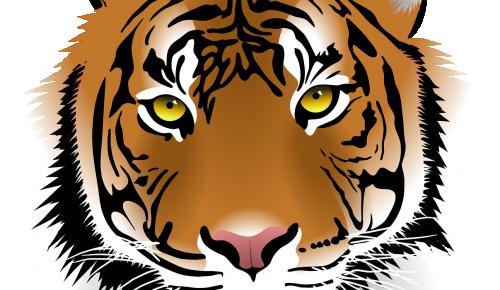 Экоцентр «Воробьёвы горы» рассказал о русских и английских тиграх