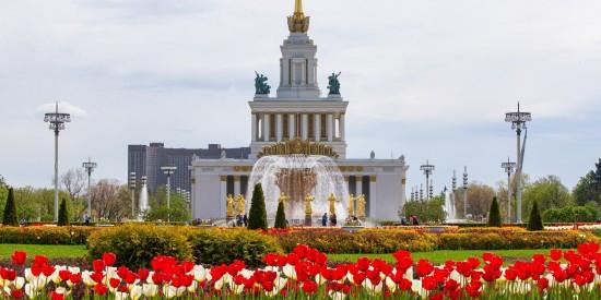 Москва в мультфильмах: в чат-боте Мосгорнаследия появилась экскурсия для детей