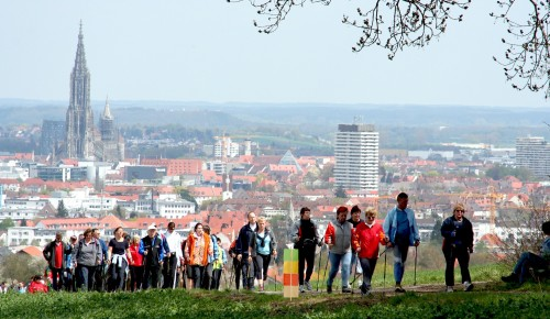 5 августа жители Ясенева могут принять участие в марафоне «День здоровья» проекта «Московское долголетие»