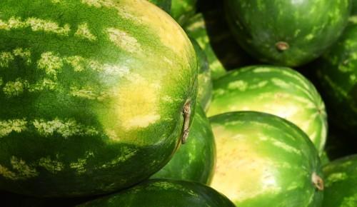 Где в ЮЗАО купить арбузы и дыни