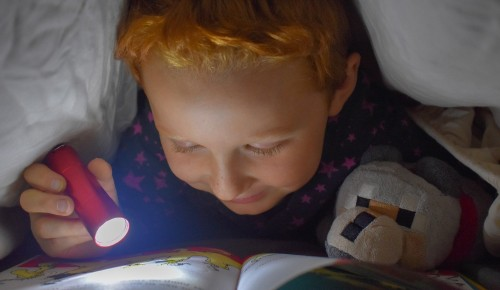 В библиотеке №192 Северного Бутова стартует третий этап Книгосветного путешествия
