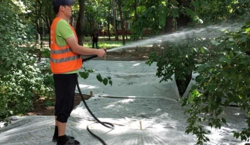 Коммунальщики ухаживают за клумбами и цветниками в Академическом районе