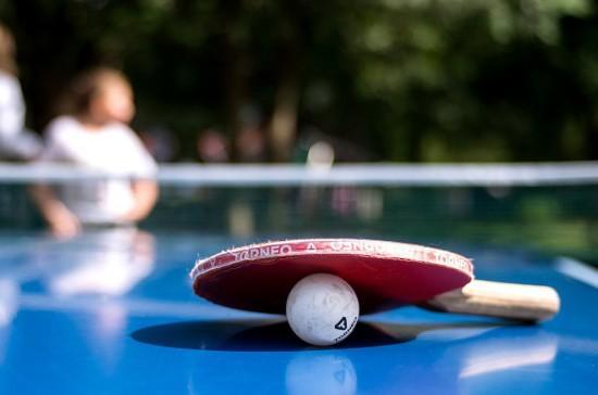 В Воронцовском парке можно поиграть в настольный теннис