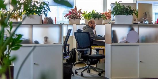 Требование о переводе 30% сотрудников на «удаленку» стало рекомендательным