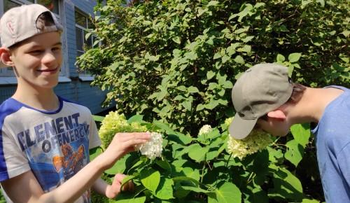 Летом ребята из «Юноны» участвуют в квестах и досуговых занятиях