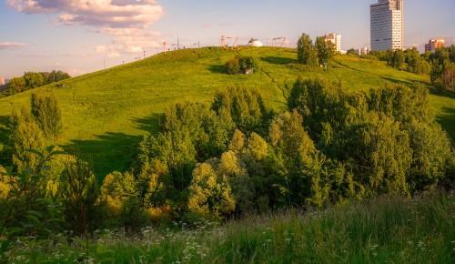 Мосприрода опубликовала видеоподкаст о Крылатских холмах